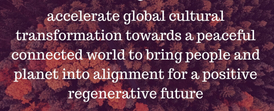 A description of of cultural emergence vision